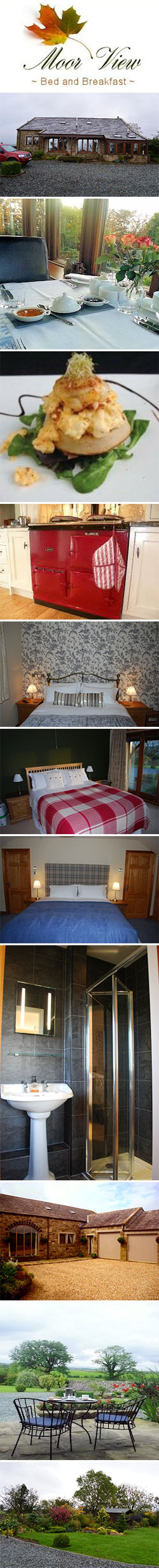 Moor View Bed & Breakfast, Clapham